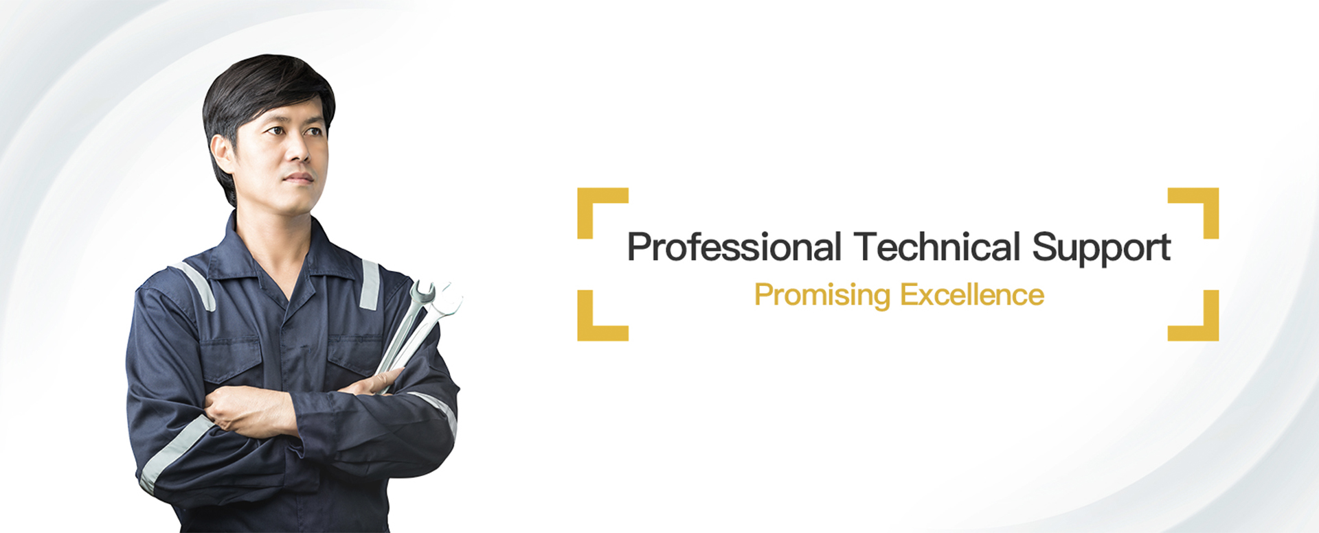 Professional Technical Support